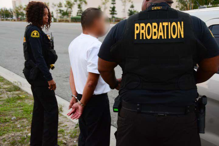 probation reports articles