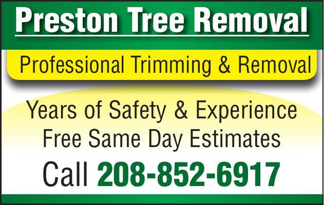 8165_Preston Tree Removal Business Directory