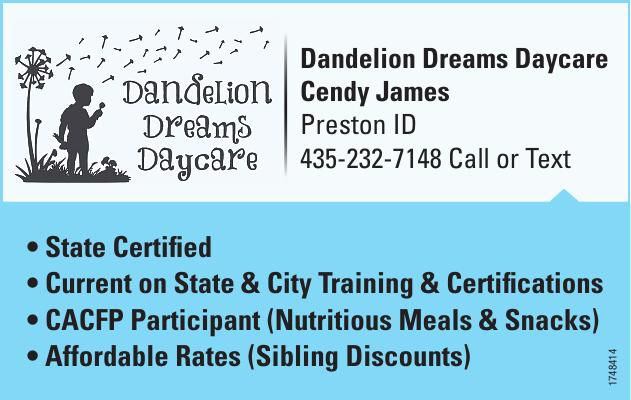 1758878 Dandelion Dreams Daycare