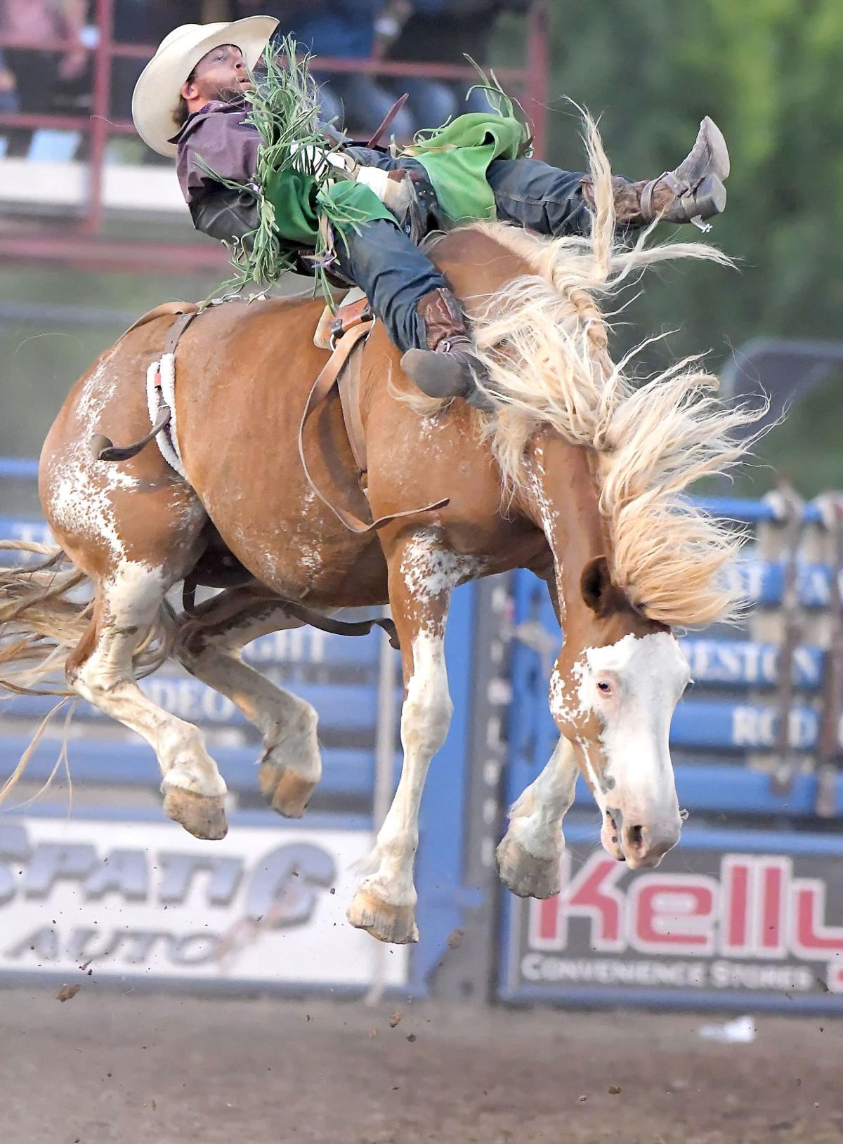 preston rodeo MAIN