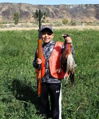 Youth pheasant season runs Oct. 2-8; two new stocking areas added this year