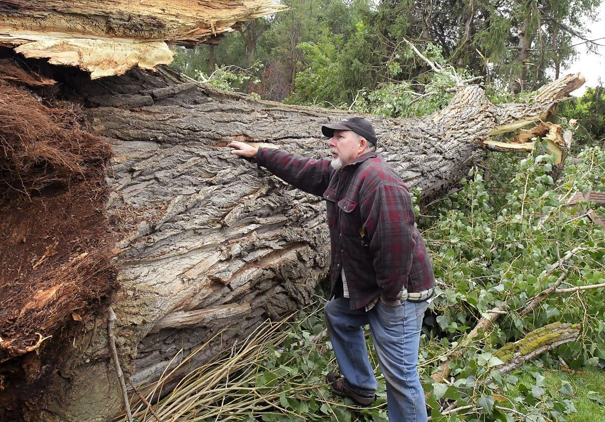 Storm Damage Swamps Cache Residents With Green Waste Accidents Disaster Hjnews Com