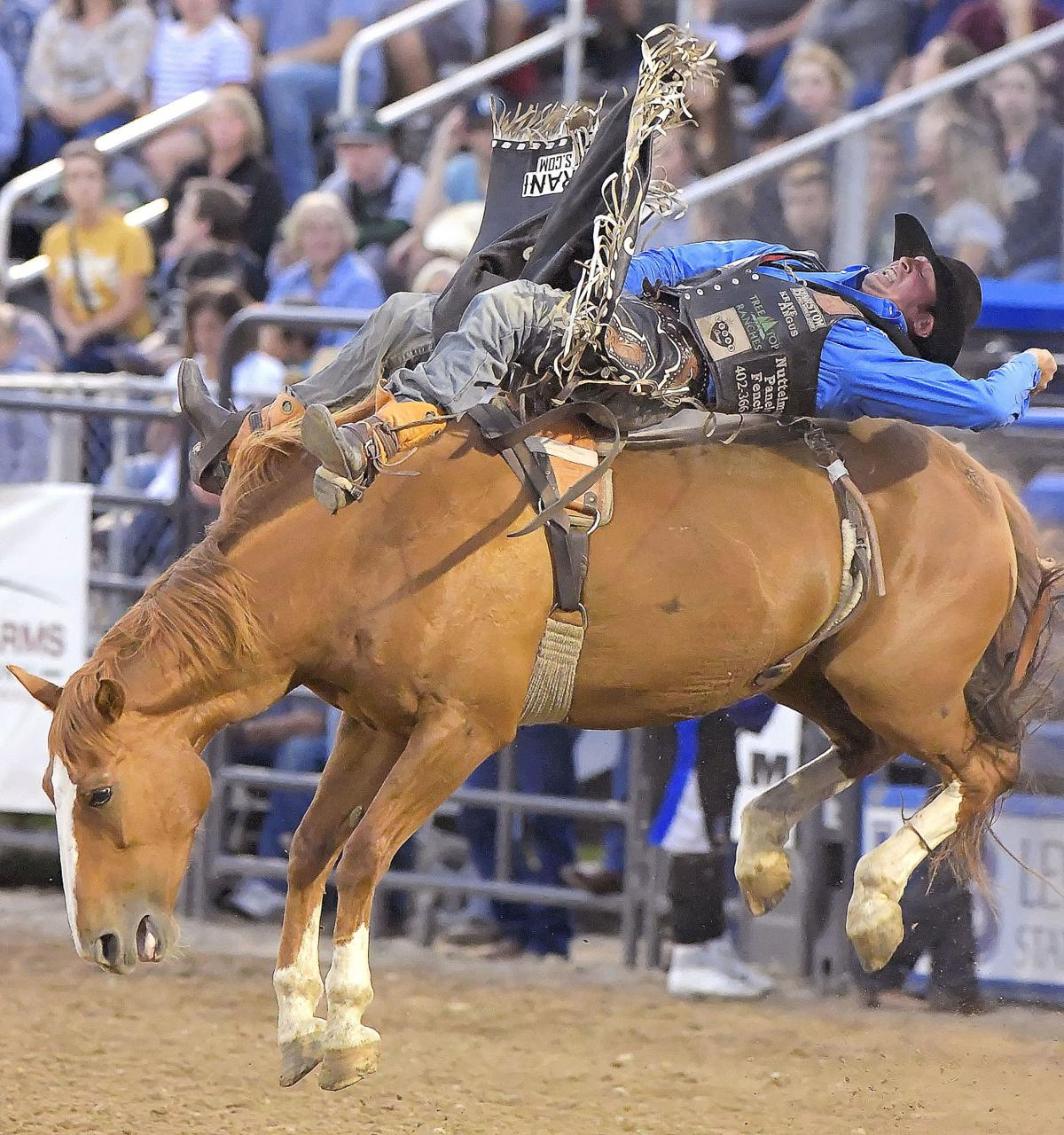 cache county rodeo MAIN