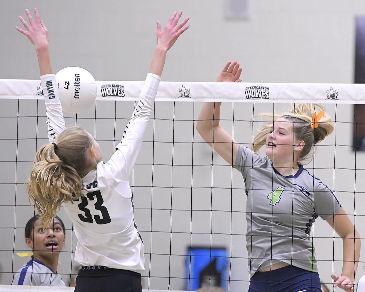 Prep volleyball: Ridgeline dominate in regular season finale
