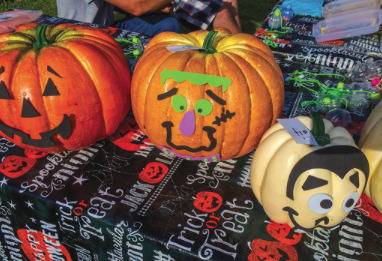 Public invited to enter pumpkin art display