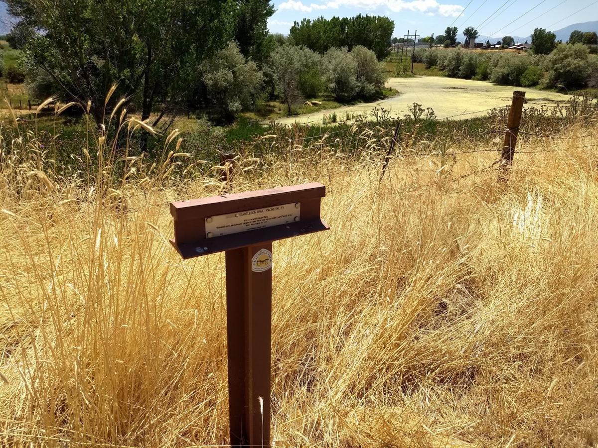 Trail marker wide