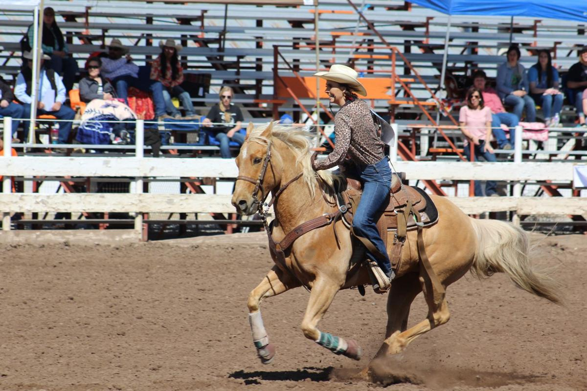 Youth rodeo held at Preston arena IMG_6804.jpg