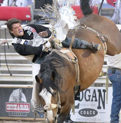 cache county rodeo