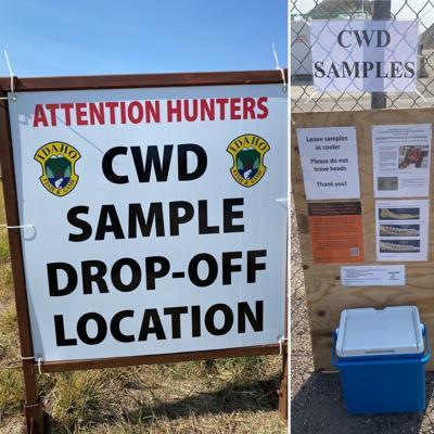 CWD sampling