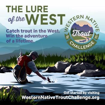 Western Native Trout  Challange logo