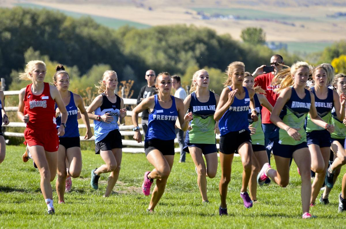 Indian cross country running well