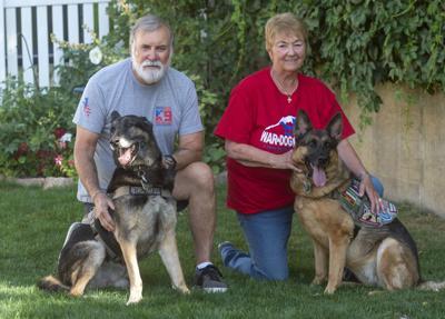 Retired War Dogs