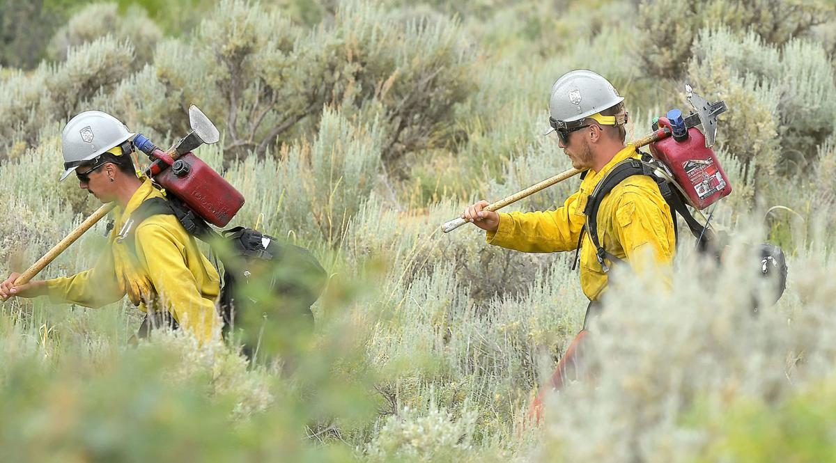 wildfire SECONDARY