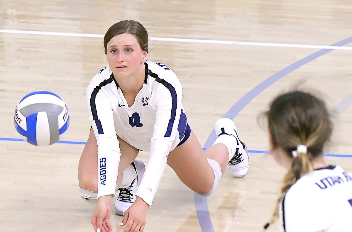 blue white volleyball 02