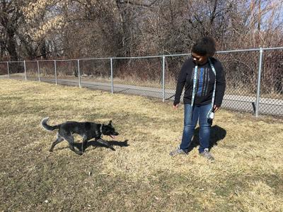 Paging the 'Poop Patrol': Logan Parks and Recreation staff prepares parks for pilot dog program