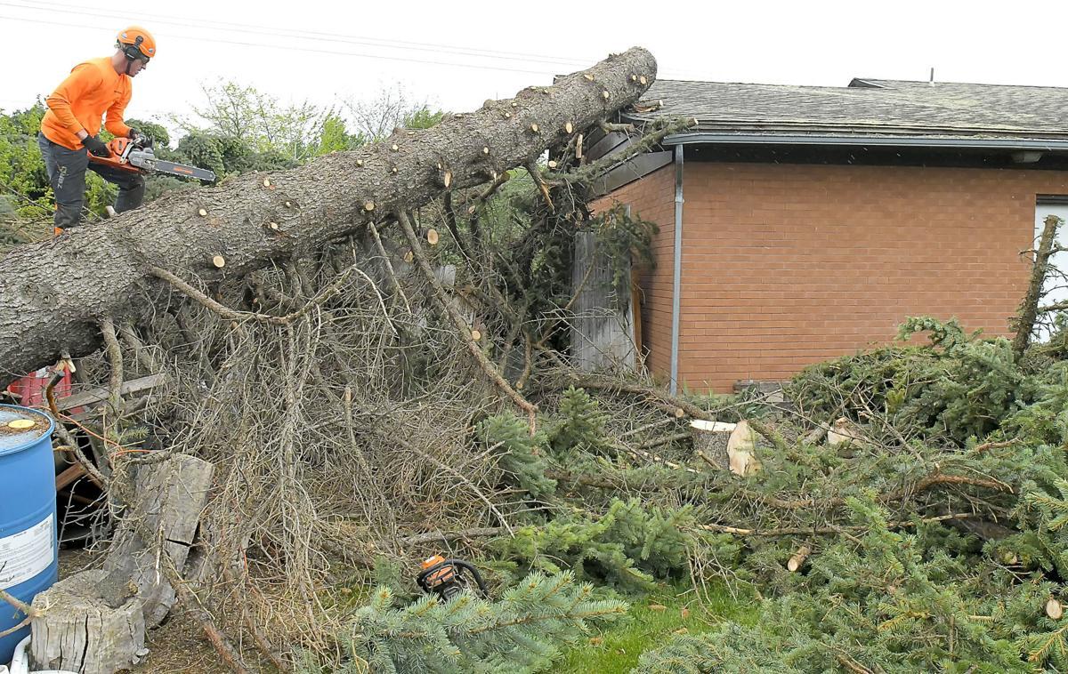 wind damage MAIN