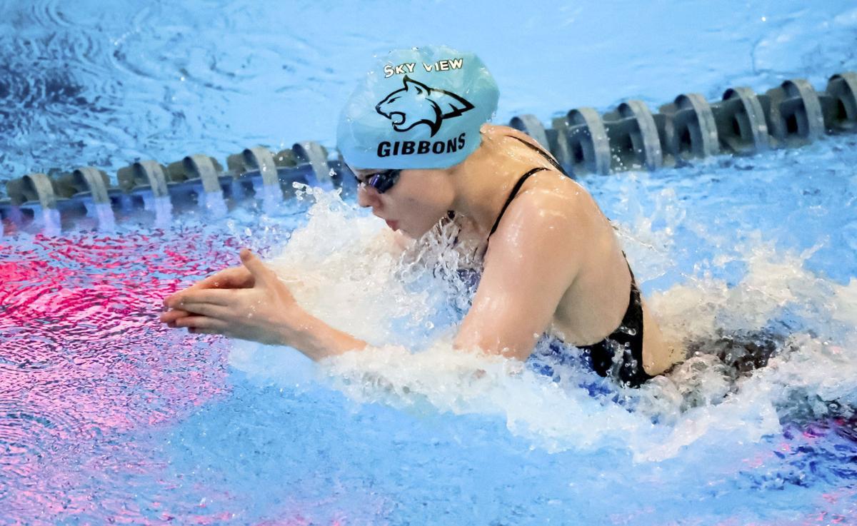 sv girls swimming (main)
