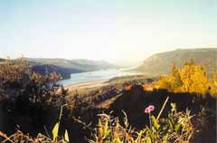 Gorge-ous countryDo look down…and all around, too, at the nearby but yet exotic Columbia River Gorge