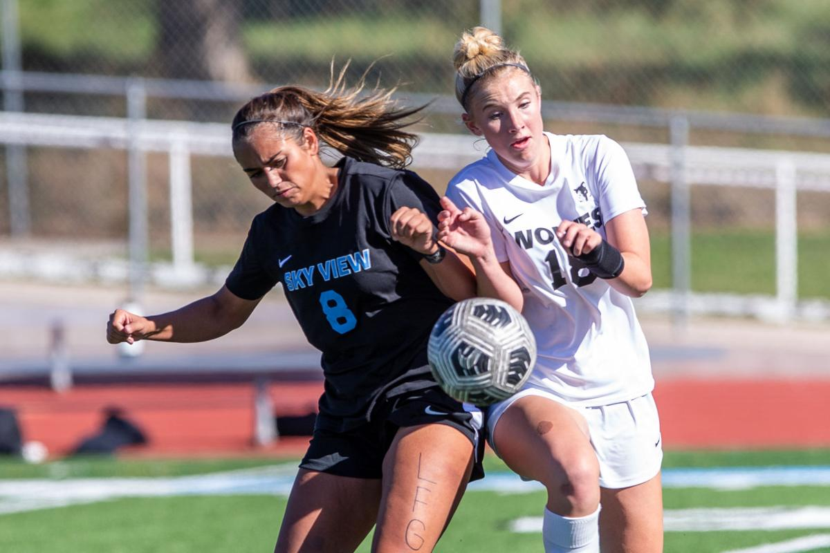 Cats, Stangs, Hawks still in mix for 4A girls soccer title