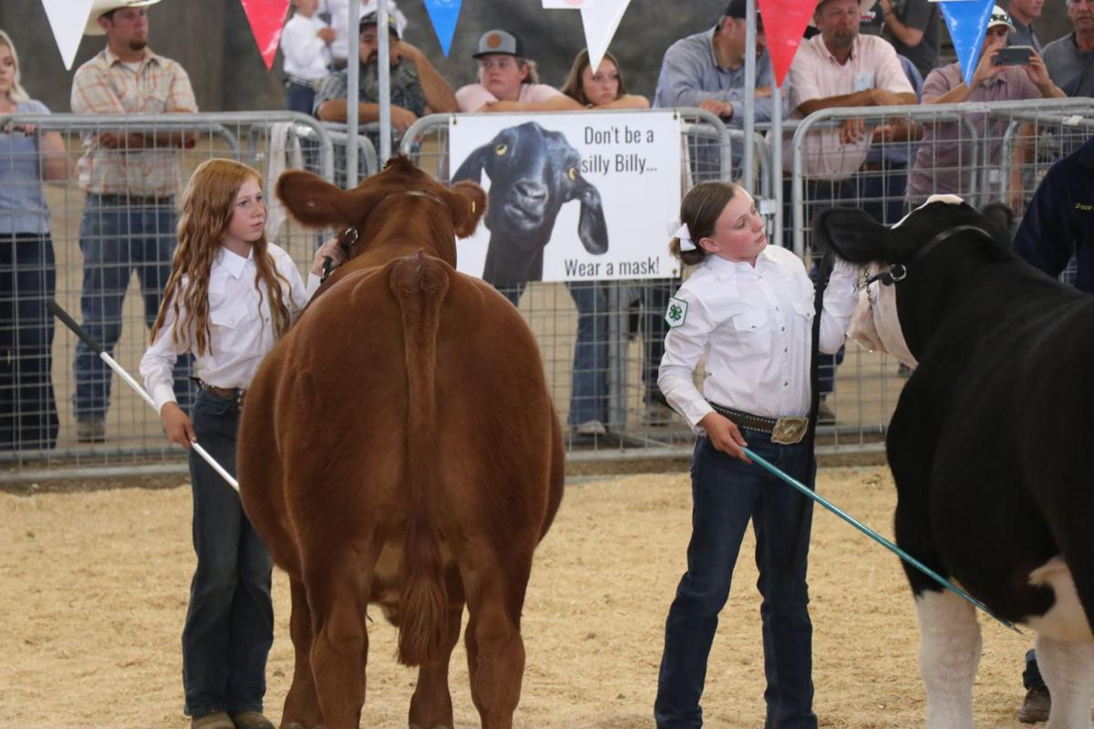 steer show secondary