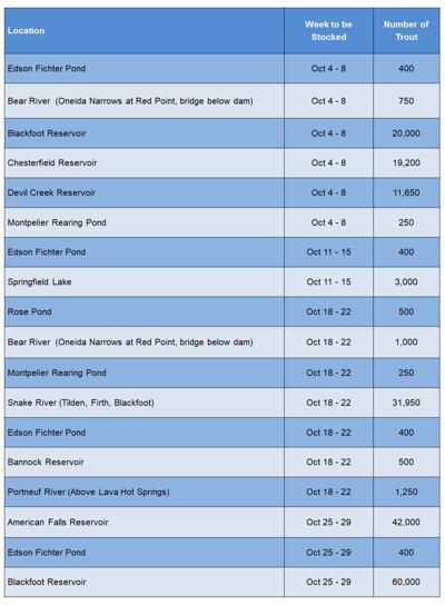 Fish Schedule