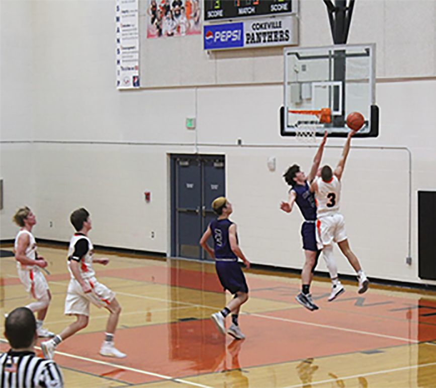 Panther's Basketball