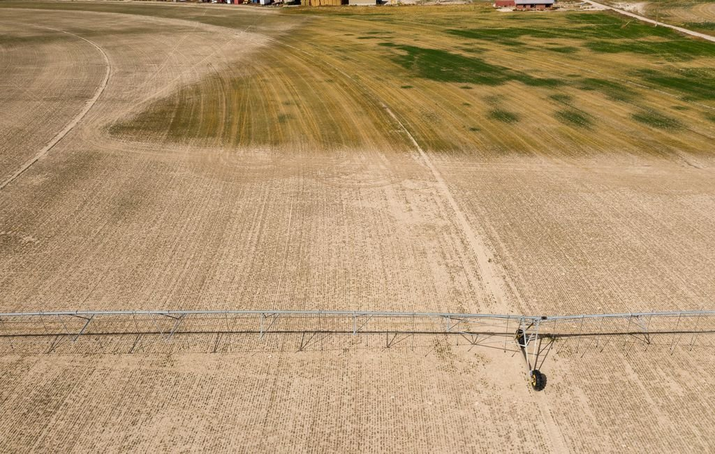 Drought takes personal toll as Utah farmers lose money, land and cattle