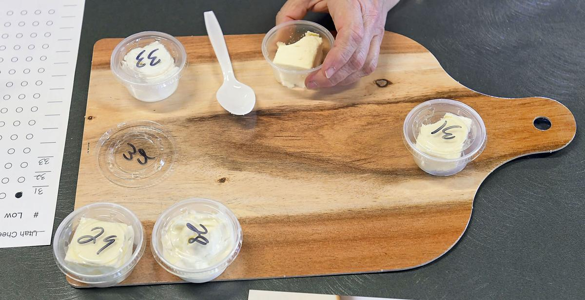 cheese judging SECONDARY
