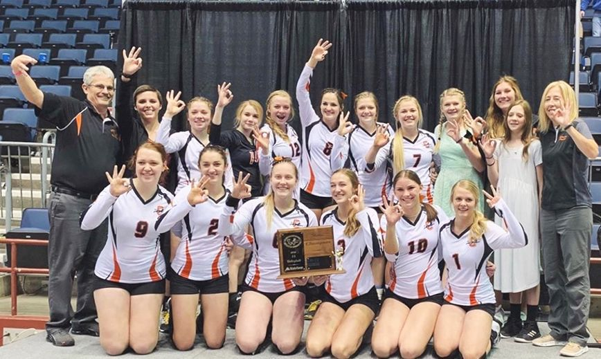Lady Panther's win State