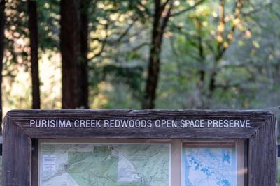 Purisima Creek Signage