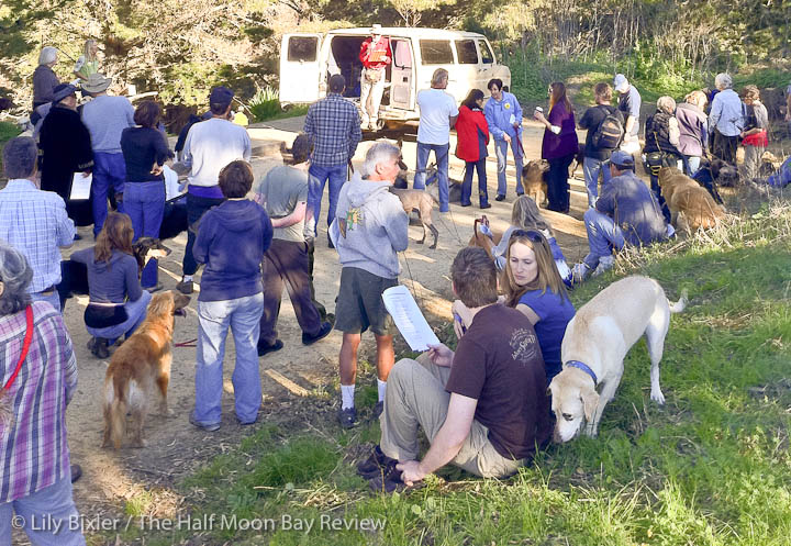 Montara Dog Group protesters