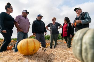 New and old pumpkin patch owners