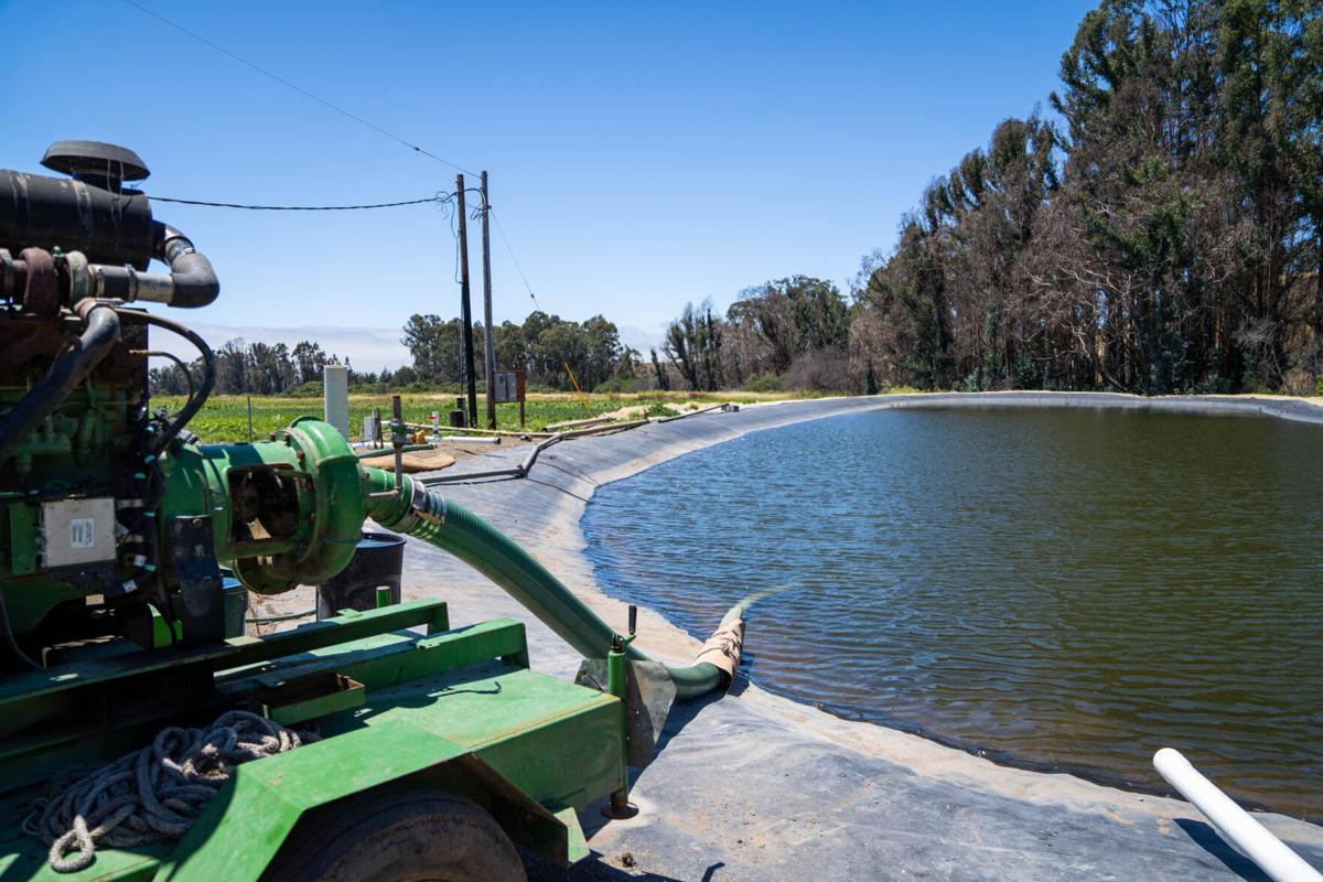 Pump line at Brisa de Ano