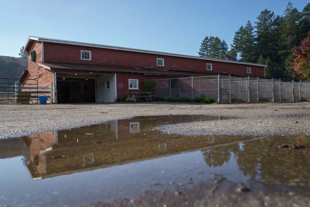 Barn Used for Evacuated Horses