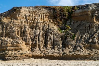 Poplar Beach bluffs