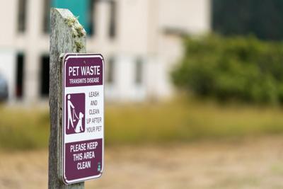 Dog waste signs at Pillar Point Bluff