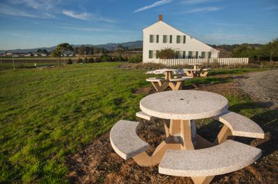 image- johnston garden