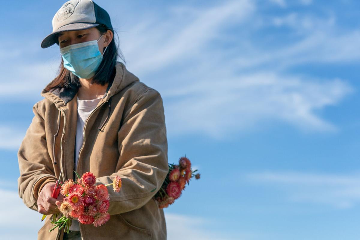 Gaby Lee of Lunaria Farms