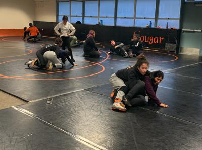 image-wrestling practice