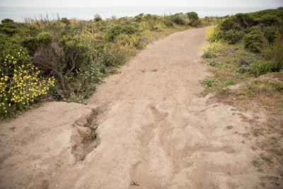 Walking trails to reopen