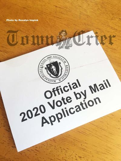Request for mail-in ballot