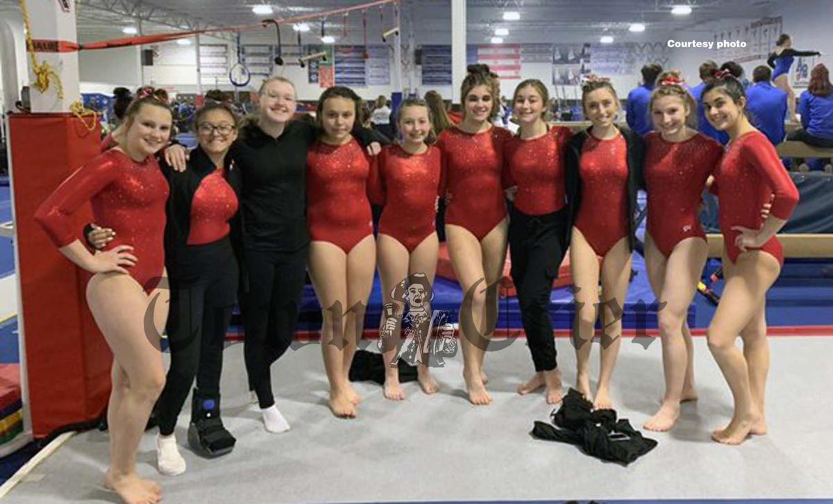 Members of the TMHS gymnastics team