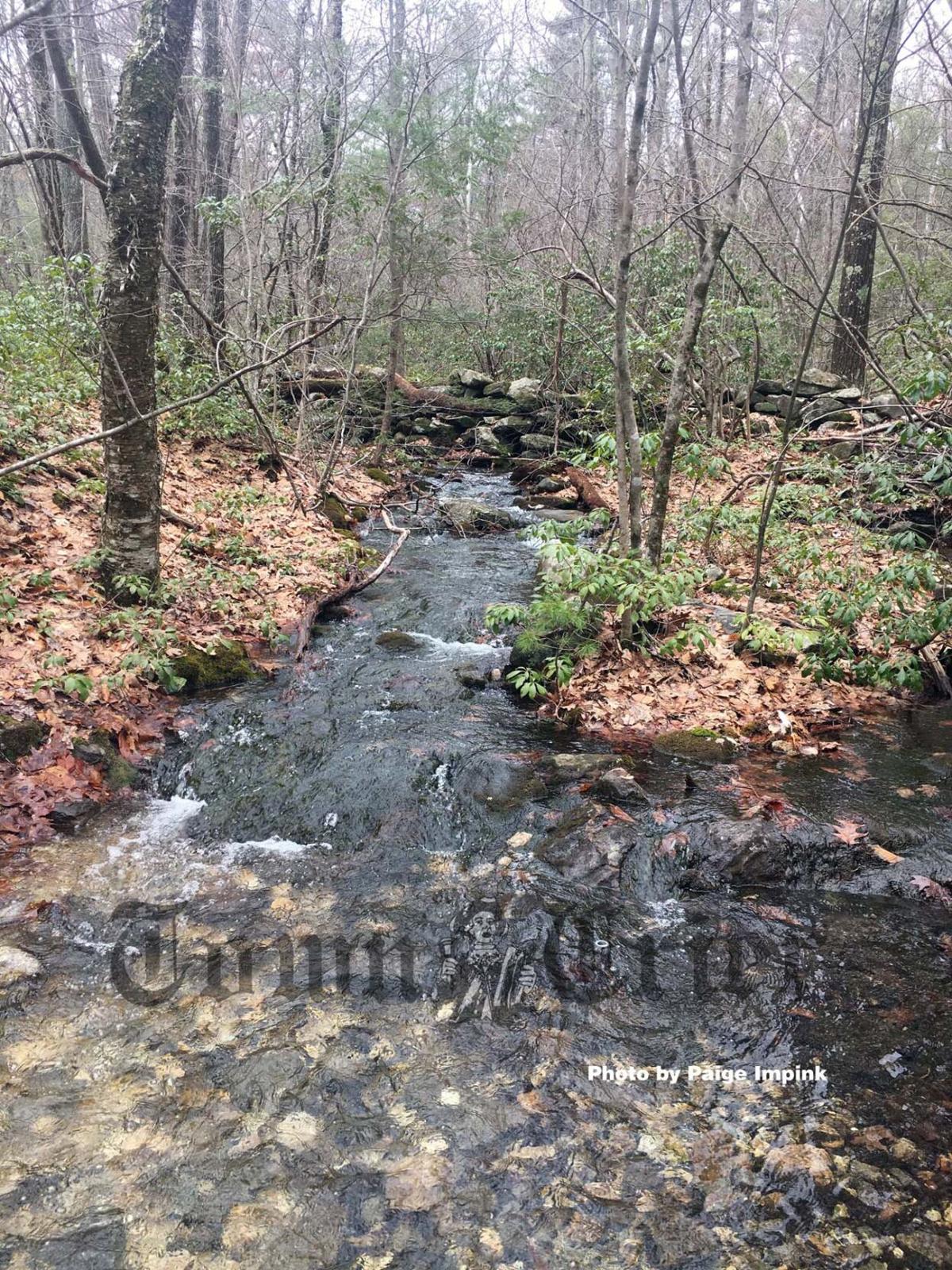 Beautiful brook runs down the Monoosnoc trail