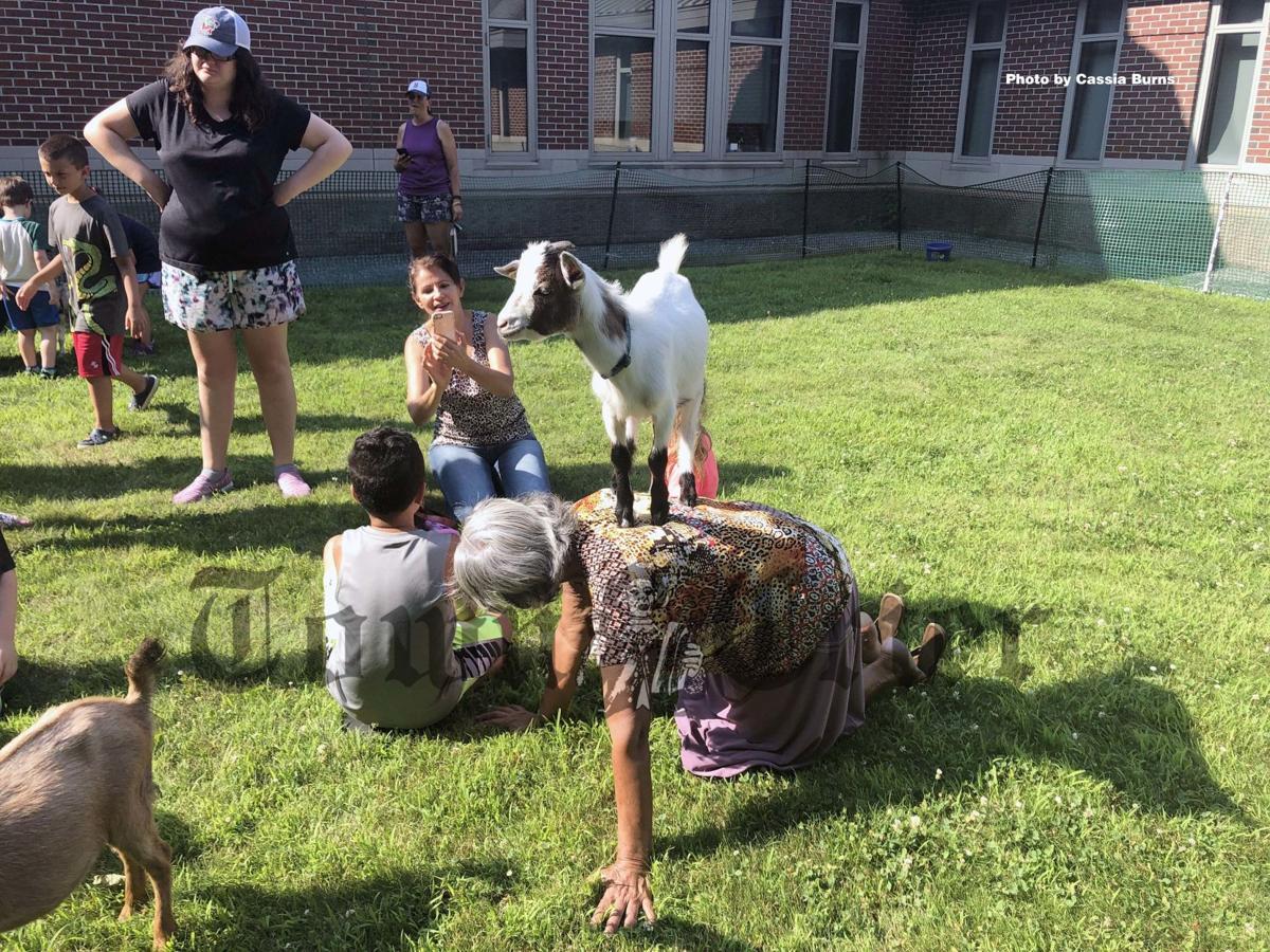Residents try goat yoga
