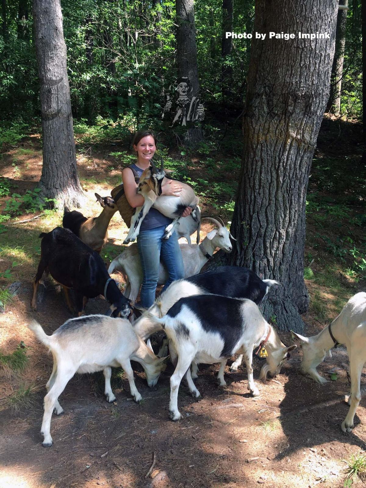 Hannah Miller and her dairy goats