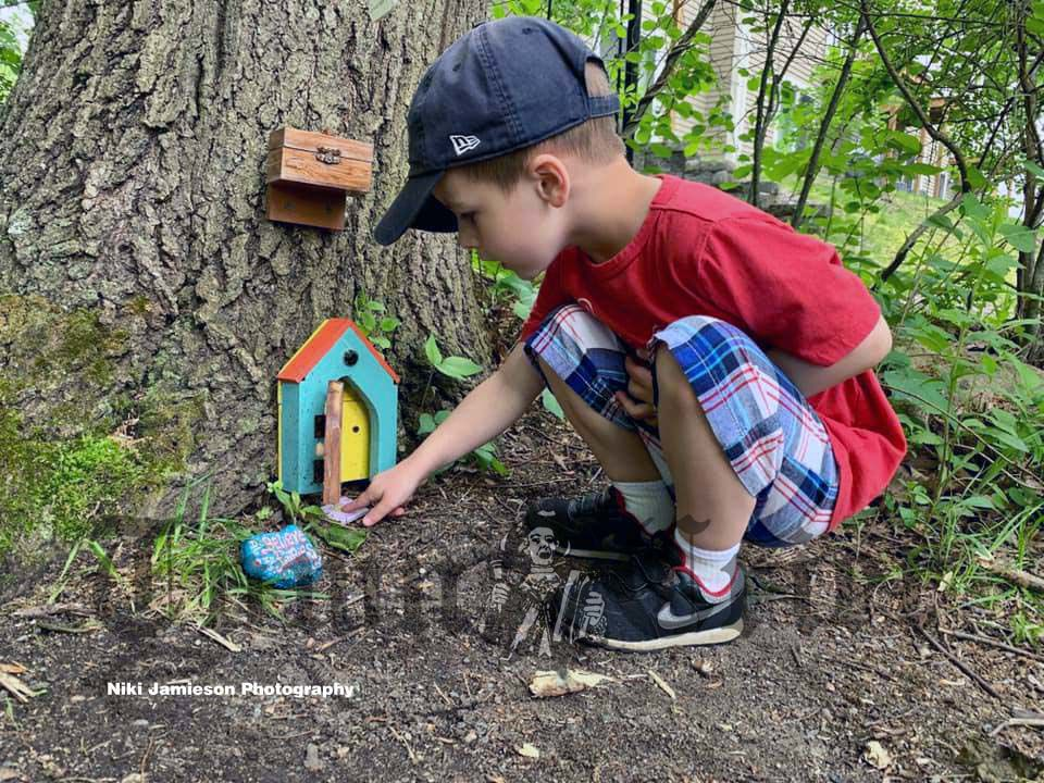 Four-year-old Wilmington resident explores a fairy house