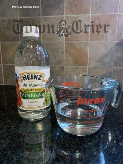 Celebrate National Vinegar Month