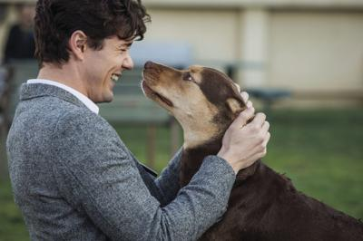 Film Review - A Dog's Way Home