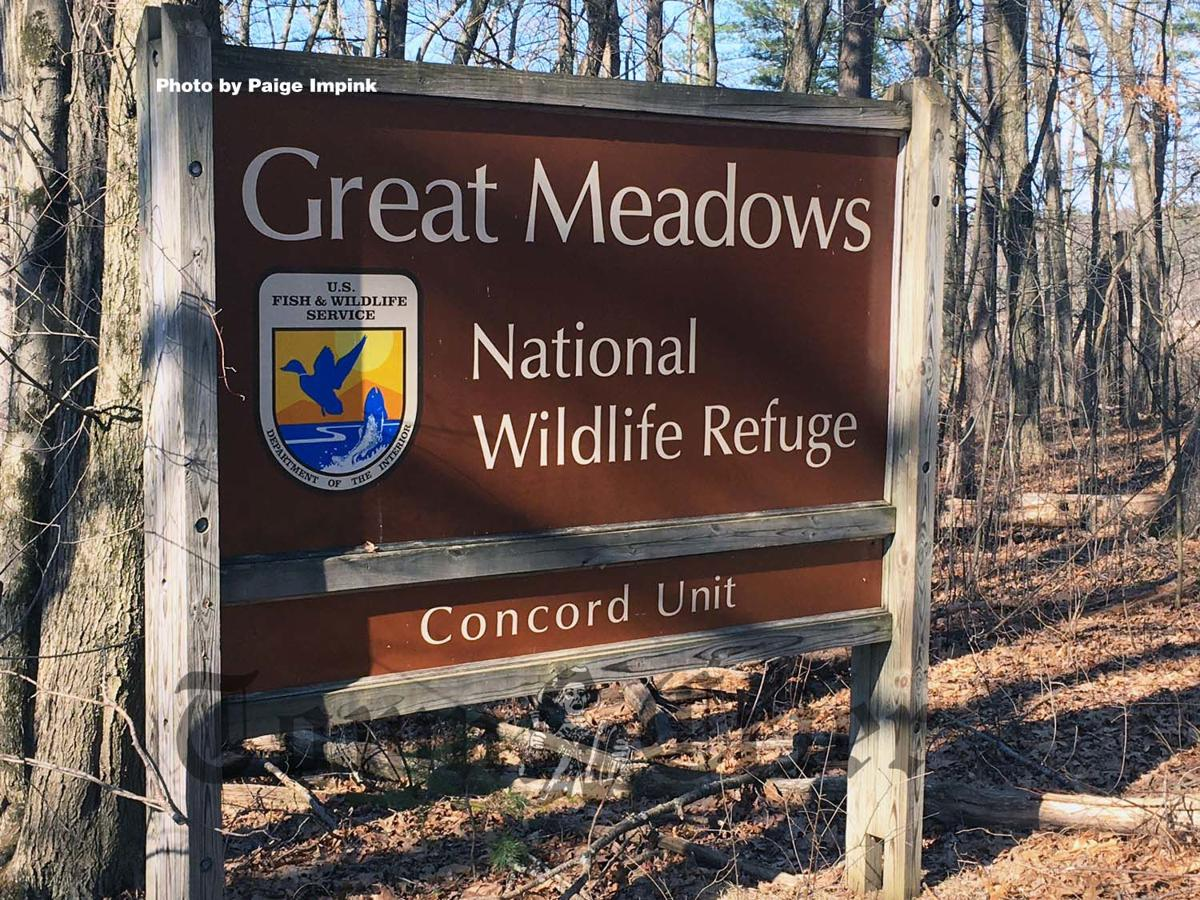 Entry sign at Great Meadows