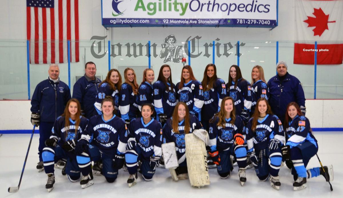 2019-2020 Wilmington High School Girls Varsity Hockey team